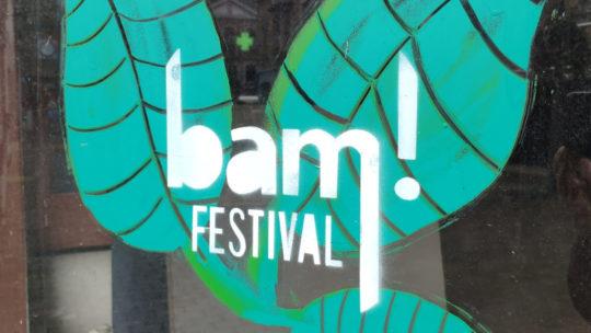Visite de l'exposition au BAM
